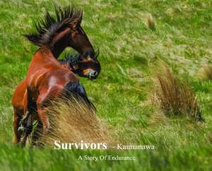 merch-book-survivors